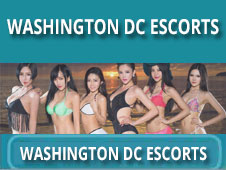 Washington DC Escorts